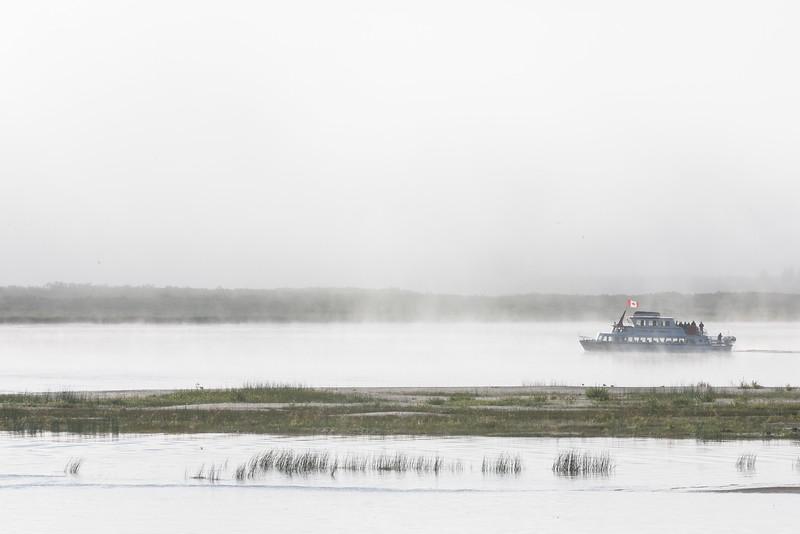 Polar Princess tour boat across the river on a foggy mornng. 2006 August 31st.