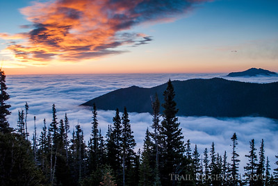 Trail Ridge In Sunrise
