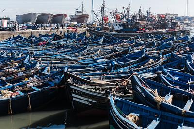 Morocco_2015 Essaouria
