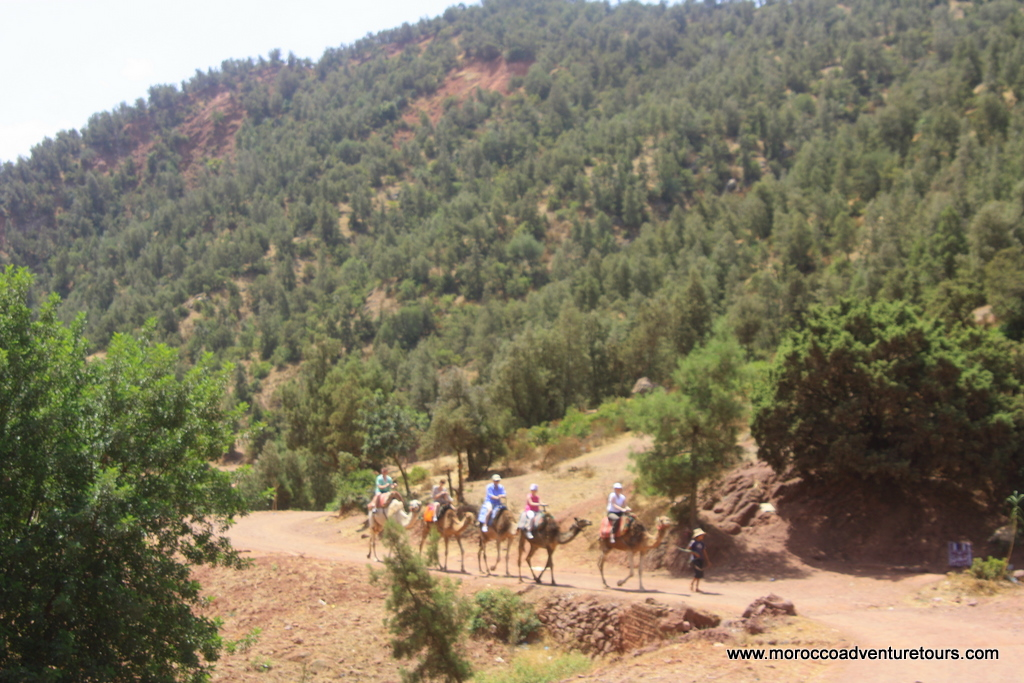 Canyoning Ourika Valley Morocco Adventure Tours