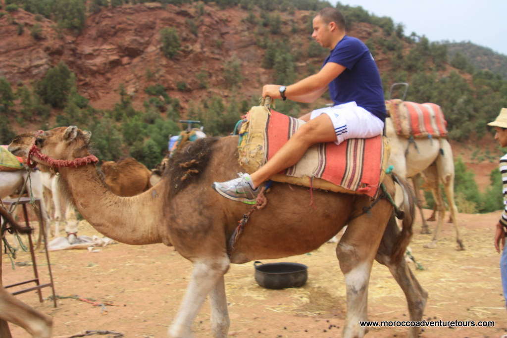 Ourika Valley Tour Morocco Adventure Tours