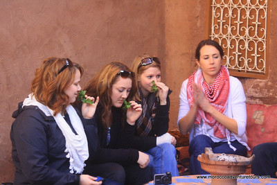 ourika velley tour with splash morocco   www.moroccoadventuretours.com