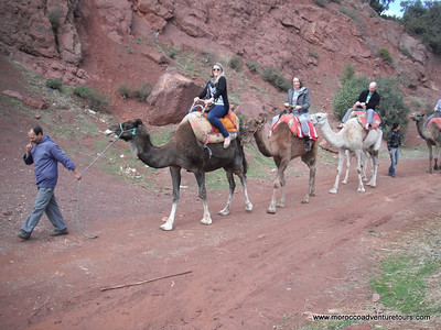 Morocco Ourika Valley Cultural Tour with Splash Morocco