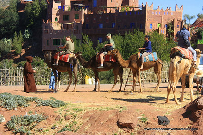 A day adventure with Splash Morocco ,visit a traditional Berber house ,camel ride , trekking to visit  some waterfalls join us at www.moroccoadventuretours.com