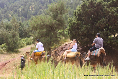 Whitewater Tubing combined with Ourika Valley Tour, join us at http://www.moroccoadventuretours.com