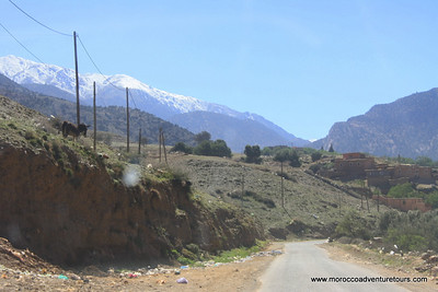 A half day tubing adventure at N,fis river just 1 hour outside of Marrakech enjoin us at www.moroccoadventuretours.com