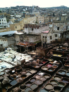 obligatory fes tannery shot