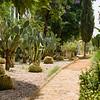 Walking Through the Garden