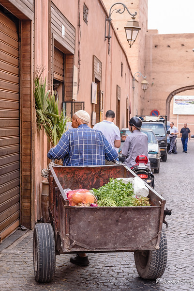 Pulling the Vegetable  Cart