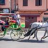 Touring Marrakesh