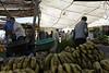 Tahanout souk stall, Tues 29 April 2014 4