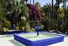 Majorelle garden, Marrakech, Mon 28 April 2014 2
