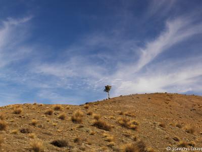 Mt Atlas, Morocco
