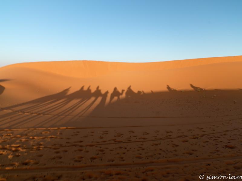 Sahara_13 12_4498882