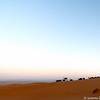 Sahara_13 12_4498918-2
