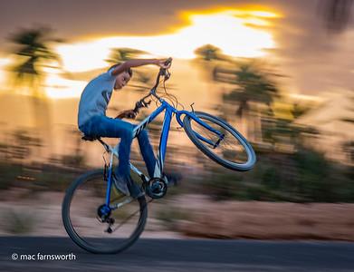 Desert Wheelie