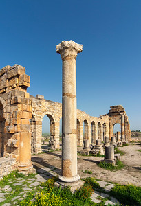 Column and Basilica, Volubilis