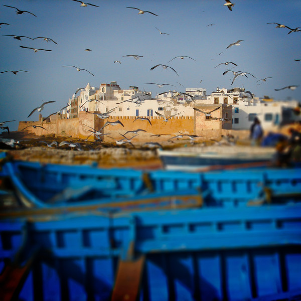 Essaouira harbor. 2007.