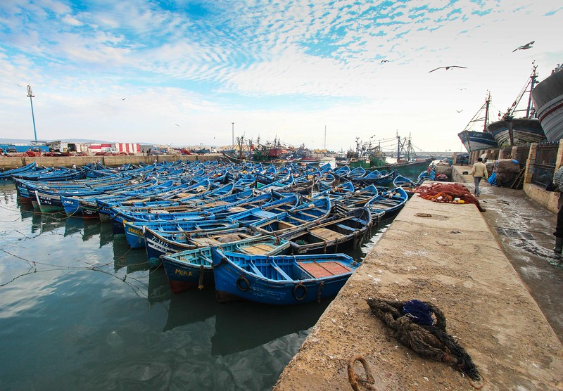 """The Fleet' – Essaouira, Morocco"