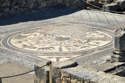 Mosaic with animals