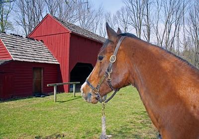 The Wick Farm Barn