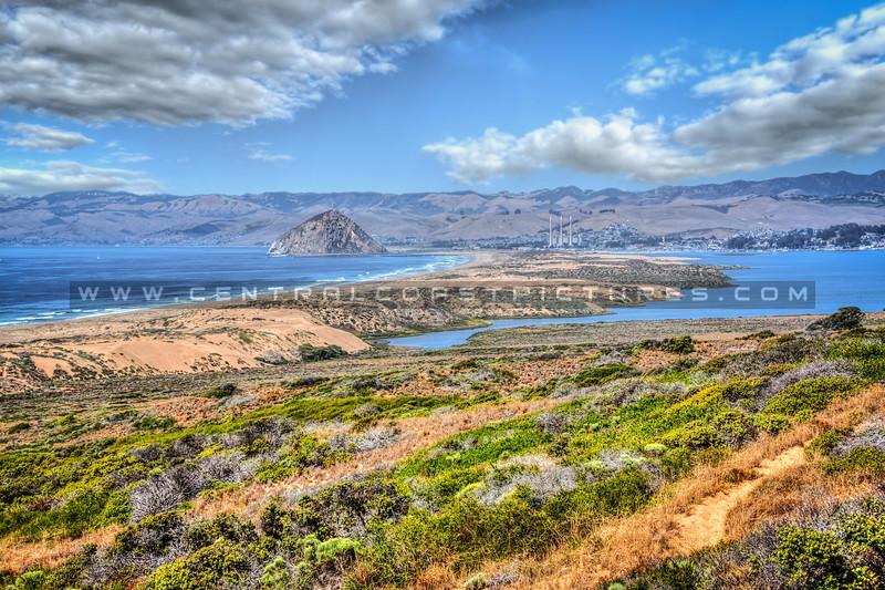 morro bay montana de oro_5845