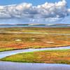 morro bay estuary_5814