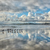 morro bay reflections 7002-