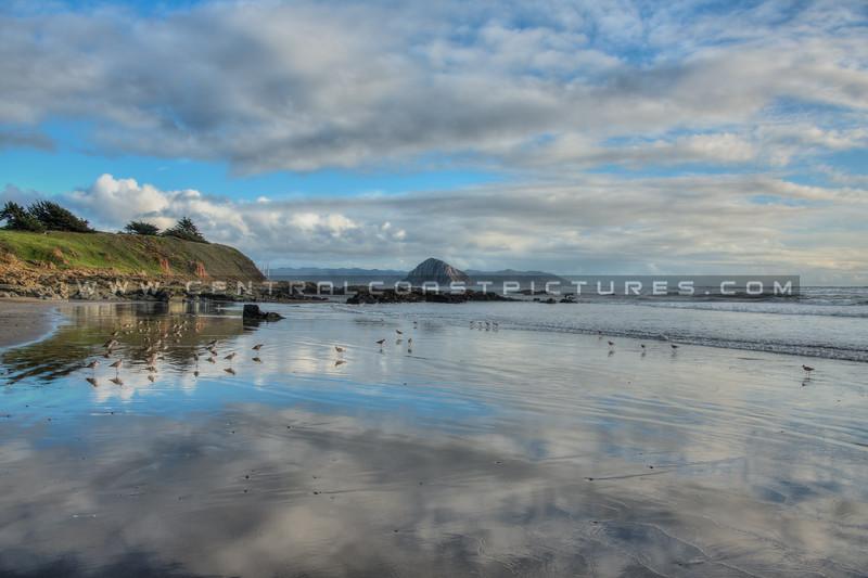morro bay reflections 6983-