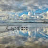 morro bay cayucos reflections 7003-