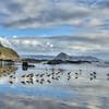 morro bay reflections 6989-