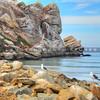 morro-bay-rock_7039