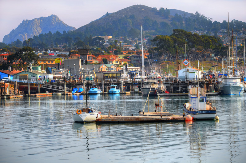 morro-bay-harbor_7142 (1)
