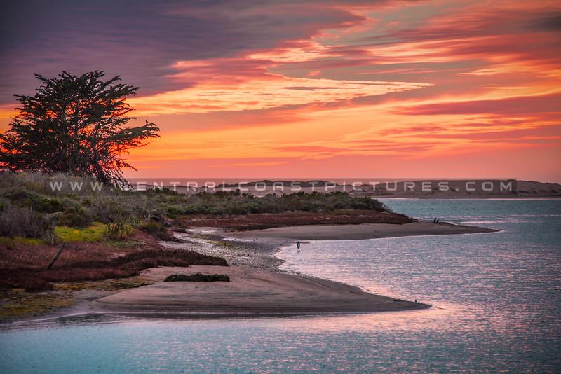 morro bay sunset-5007