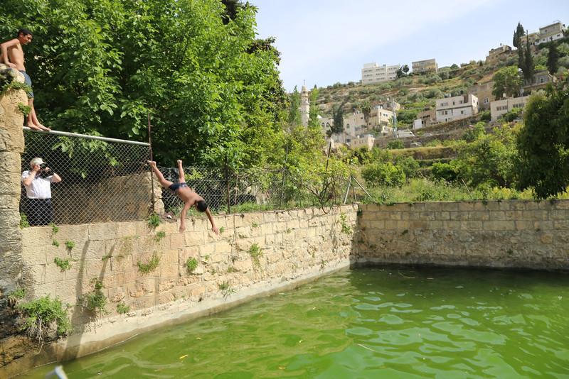 Palestinian children playing in the fresh water spring fed pool of Battir