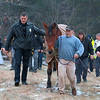 A horse by the name of Charlie got lose from it's barn just after noon on Tuesday in Westminster. It fell on some ice just off of Overlook Road and could not get back up. Many came out to help and it took till about 3:30 before they where able to pull him to safety. After he was safely out of the woods they got him up and walked him around to make sure he was okay. Walking with him, on left with his hand n his side, is Officer Jeff Shampine who was the first to find Charlie after he got out. SENTINEL & ENTERPRISE/JOHN LOVE