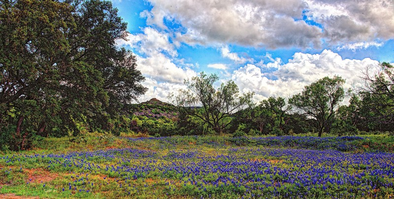 Willow City Loop, Texas Hill Country