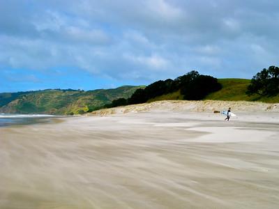 Windswept Beach in New Zealand
