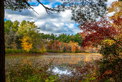 Kettle Pond Fall