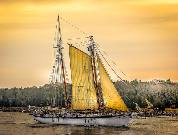 Schooner 'Harvey Gamage'