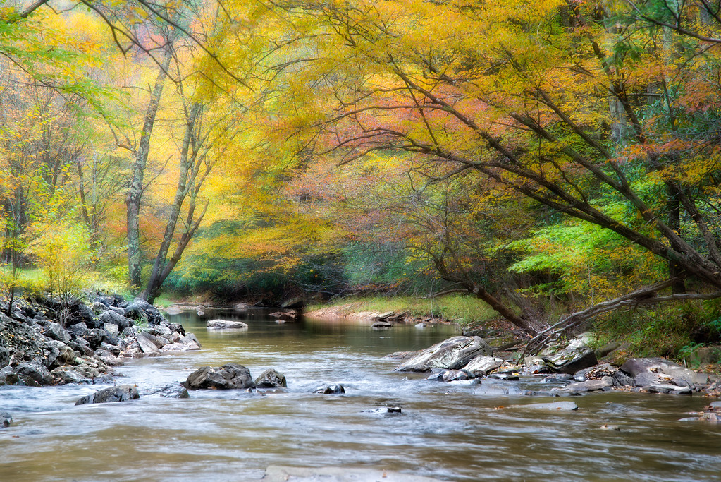 "Oct 13 - Gandy Creek #1<br /> <br /> Weather was overcast which is a perfect time to capture water to avoid ""hot spots"" :)"