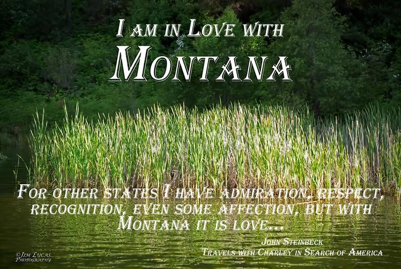 P6199614Rev1-Montana