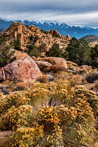 Mountain Strata - California-Nevada Border, Benton, CA