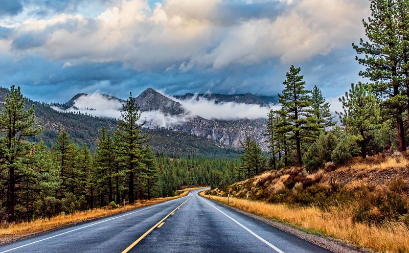 Road to Mountain Mists - Markleeville, CA