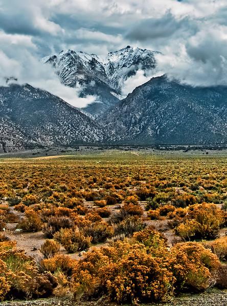 Boundary Peak - Benton, CA