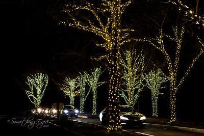 Lehigh Valley Zoo - Winter Lights