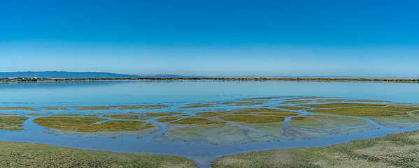 Sunnyale marshlands CA_140719_DSB1138-Pano