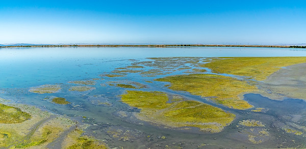 Sunnyale marshlands CA_140719_DSB1143-Pano