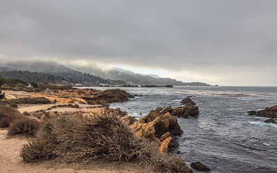 Point Lobos CA_111014_MG_3660