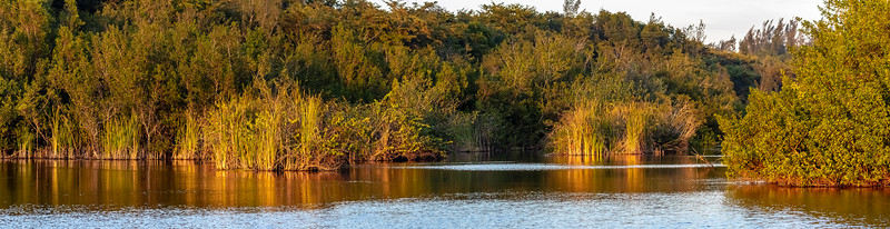 Canal Hondones_CZ_140119_A3A4451-Pano